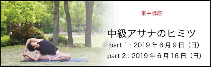 中級アサナ講座.jpg